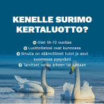 Surimo Finance – Lue kokemuksia Surimon kulutusluotoista